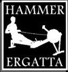 Hammer Ergatta Logo